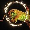 Цирки в Екатеринбурге