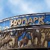 Зоопарки в Екатеринбурге
